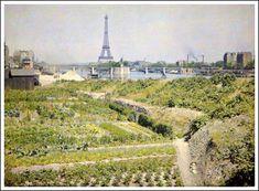 Jardin potager sur le quai d'Auteuil en 1918...