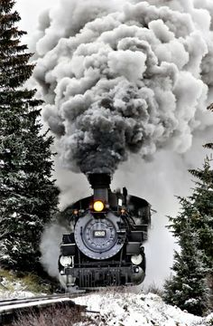 looks like the Hogwarts Express
