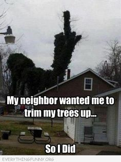 funny caption pictures my neighbor asked me to trim my trees giving the finger