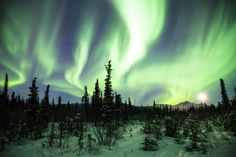NORTHERN LIGHTS, ALASKA The Aurora Borealis is a concentration of charged particles entering the atmosphere and creating incredible lights in the sky when they ionize.