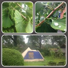 Dag 3 #synchroonkijken #jouwzomer Kamperen in je eigen tuin? #optional   Succes vandaag! @Else Kramer