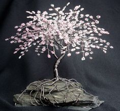Mini bonsai cherry blossom tree. Wish this was for sale.