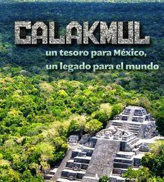 Campeche: Calakmul / Fundación Televisa implementará campaña...