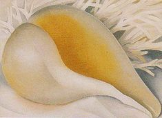 Georgia O'Keeffe (American, Shell (Shell IV, The Shell, Shell I), Oil on canvas. Georgia O'keeffe, Wisconsin, Georgia O Keeffe Paintings, Alfred Stieglitz, New York Art, Oil Painting Reproductions, Mellow Yellow, Community Art, American Artists