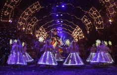 christmas in brazil pictures | ... Light Photo Gallery - Photos of Christmas of Light in Gramado, Brazil