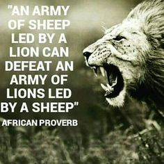 The importance of leadership...striving to be a lion - metaphorically speaking