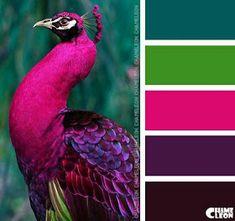 Color Inspiration - contrasting colors for cinder block porch shelf (purple & blue) - CoDesign Magazine Color Schemes Colour Palettes, Paint Color Schemes, Colour Pallette, Color Palate, Color Combos, Peacock Color Scheme, Peacock Colors, Graphisches Design, Logo Design