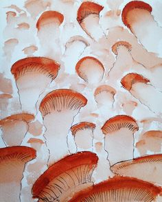 Sebastian Arango ART 'Mushrooms'. Tinta y acuarela sobre papel #watercolor #penandink #inkonpaper #drawing #contemporaryart #drawingoftheday #dibujo #mushroom Sebastian Arango, Mushrooms, Paintings, Abstract, World, Artwork, Watercolor Painting, Summary, Work Of Art