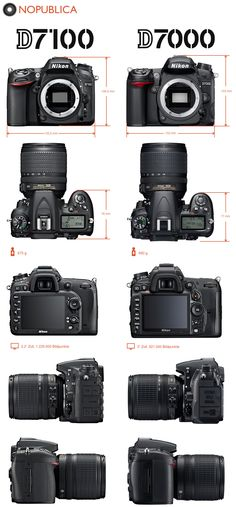 I currently own the Nikon D3000 and D5100 but I am waiting for the next gen D9000 before I get my third body.