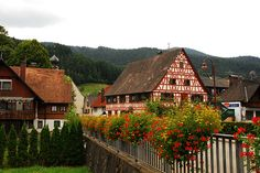 A village in the Black Forest.