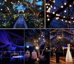 Garden Party Decoration Star Lights Wedding