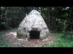 WATCH: He Gathers Materials From The Woods. An Afternoon Later, I'm Astonished At What He's Built [VIDEO]