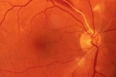 3D Printed Eye Cells Could Cure Blindness | HUH.