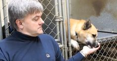 If you're the proud parent of a formerly homeless canine, chances are pretty good that adopting that dog changed your life. Many families claim that adopting a pet from the shelter was the best thing they've ever done, as no other soul on the planet can show you the love or appreciation a straycan after... View Article