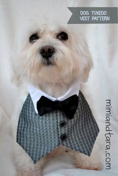 Free Dog tuxedo vest pattern and tutorial.