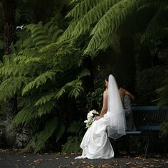 Among the ferns :: Photo by Nathania Springs Receptions :: Dandenong Ranges, Victoria, Australia