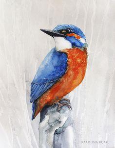 Kingsfisher on the rock  by Kakiaart
