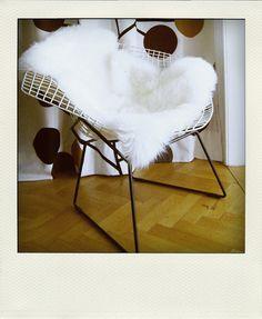 Diamond chair by Harry Bertoia w/ sheep skin throw