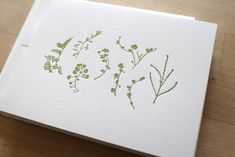 Object of Desire: Botanical Calendars and Cards from Moontree Letterpress Card Sizes, Letterpress, Paper Cutting, Note Cards, Christmas Cards, Plants, Handmade, Layout, Gift Ideas