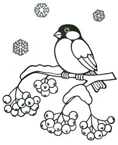 37 ideas for craft for kids winter coloring pages Christmas Coloring Pages, Coloring Book Pages, Coloring Pages For Kids, Art Quilling, Quilling Patterns, Vogel Illustration, Wood Burning Patterns, Bird Drawings, Winter Art