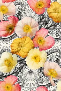 Graphic Poppy Collage by micklyn - Created from a combination of hand drawn, graphic black, cream and grey patterns and bright yellow, pink, peach and orange poppies.