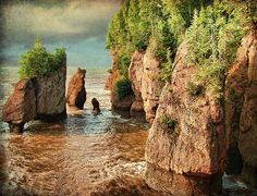 Hopewell Rocks. Can't wait to go here when we move to NB next year!