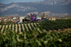 Love to go there!   Bilbao and Rioja wines from $346