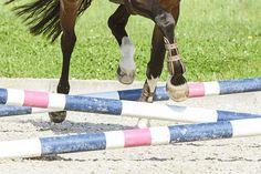 Kreative Gymnastikreihen machen Pferde auf jedem Niveau viel Spaß. Mit diesen neun Übungen werden sie zudem klüger, geschickter und geschmeidiger.