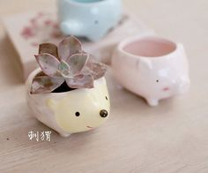 This listing is for one piece of animal shape ceramic planter ( plants are not included ) Pattern: Hedgehog, Piggy, Elephant ( pls select