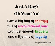 Just A Dog? To me my dog isn't a dog he is my furry little brother who gives me unconditional love and is definitely part of my family!