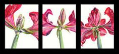 """""""Life of a Flower triptych Floral Watercolor, Watercolor Paintings, Triptych, Easel, Flowers, Life, Art, Flip Charts, Art Background"""