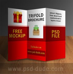 Brochure Templates Free Brochure Template Flyer Handout - Photoshop tri fold brochure template free