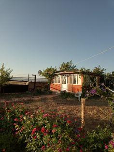 My Photo Album, My Photos, Cabin, House Styles, Plants, Home Decor, Cabins, Flora, Cottage