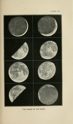 The phases of the Moon. _The heavens_ 1867 Photo Wall Collage, Picture Wall, Collage Art, Room Posters, Poster Wall, Poster Prints, Kunstjournal Inspiration, Constellations, Vintage Prints