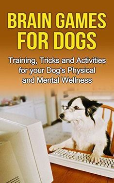 Brain Games for Dogs: Training, Tricks and Activities for your Dog's Physical and Mental wellness (Dog health,Dog tricks, train your dog,interactive games ... How to train a dog Book 1) - http://www.thepuppy.org/brain-games-for-dogs-training-tricks-and-activities-for-your-dogs-physical-and-mental-wellness-dog-healthdog-tricks-train-your-doginteractive-games-how-to-train-a-dog-book-1/ #dogtrickstraining