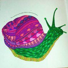 #milliemarottacolouringbook #milliemarotta #animalkindom #animalkindomcoloringbook #snail #snailtrail #snails #colouringbooks #colouringbooks #colouring