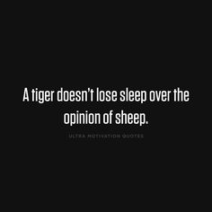 ultramotivationquotes:  A tiger doesn't lose sleep over the opinion of sleep.