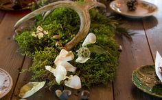 Deer themed barn wedding at Sidetrack Distillery in Kent, WA. Moss, antlers, flower petals, snow berries. Flowers provided by Flower Lab in Seattle, WA. Antler Wedding, Deer Wedding, Flower Petals, Flowers, Distillery, Antlers, Lazy, Seattle, Berries
