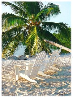 Lined up and ready to enjoy another beautiful day in the Palm Beaches. http://www.palmbeachesliving.com/contact