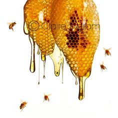 Items similar to Original square fine art photo photograph print of Honey dripping out of honeycomb with bees flying, various sizes available. on Etsy Honey Bee Tattoo, Raising Bees, Local Honey, Save The Bees, Bee Happy, Bees Knees, Milk And Honey, Fine Art Photo, Pics Art