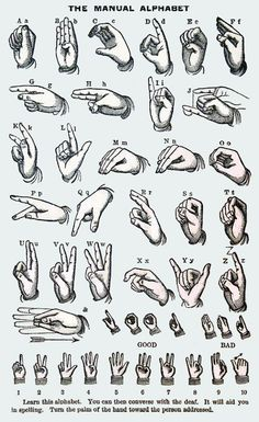 The Manual Alphabet