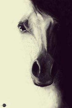 Come to me, my dream.. Digital illustration Horse / Art Print by LilaVert