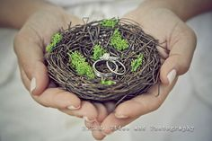Wedding rings in rustic nest. R.E.M. Weddings www.remvp.com