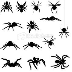 Spider silhouette collection Royalty Free Stock Vector Art Illustration