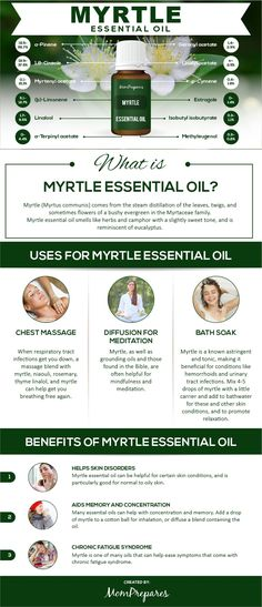 Essential Oil - The Complete Uses and Benefits Guide Myrtle essential oil comes from steam distillation from a bushy evergreen. It has many uses and benefits which are all covered in this guide. Myrtle Essential Oil, Essential Oils For Pain, Frankincense Essential Oil, Essential Oil Uses, Young Living Essential Oils, Pomegranate Seed Oil, Steam Distillation, Yl Oils, Young Living Oils