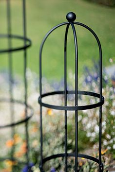 Supports for climbing plants: -Obelisks, tripods and teepees -Fencing and porches, with netting -Twiggy branches -Existing shrub or tree