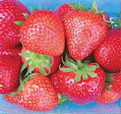 Strawberries - Mid Season Strawberry Plants            Mid Summer Strawberries: These generally begin producing approximately 8 - 10 days after Early Season strawberries.  Varieties include Hapil & Elsanta. £4.25