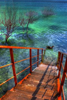 Stairway at  Kournas lake, Crete by Theophilos, via Flickr