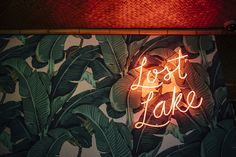 Land and Sea Dept. is excited to announce the opening of Lost Lake, a tropical tiki bar located at the corner of Diversey Avenue and Kedzie Boulevard.