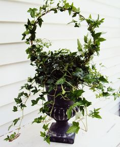 How to create a topiary from a wire hanger. This project is simple and easy. How to create a topiary from a wire hanger. This project is simple and easy. Indoor Garden, Garden Art, Indoor Plants, Outdoor Gardens, Garden Design, Ivy Plants, Garden Plants, Outdoor Projects, Garden Projects